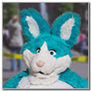 Eurofurence 2014 fursuit photoshoot. Preview picture of Weremoco, Freddypanda
