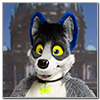 Eurofurence 2014 fursuit photoshoot. Preview picture of Lars