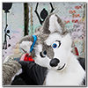 Eurofurence 2014 fursuit photoshoot. Preview picture of HemiHusky