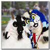 Eurofurence 2014 fursuit photoshoot. Preview picture of Camelia, Gregory Klippenspringer