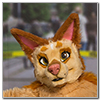 Eurofurence 2014 fursuit photoshoot. Preview picture of Sotix