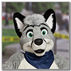 Eurofurence 2014 fursuit photoshoot. Preview picture of Silver