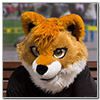 Eurofurence 2014 fursuit photoshoot. Preview picture of Akita Inu