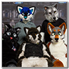 Eurofurence 2014 fursuit photoshoot. Preview picture of Asaril, Shadow D  Lightwolf, Fallenwolf, …