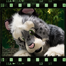 Eurofurence 2015 fursuit photoshoot. Preview picture of Sethaa, Boltee