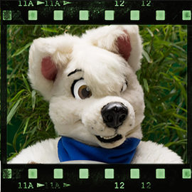 Eurofurence 2015 fursuit photoshoot. Preview picture of Boltee, Sethaa