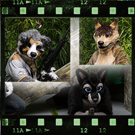 Eurofurence 2015 fursuit photoshoot. Preview picture of Jumpy, SGKia, Codydog