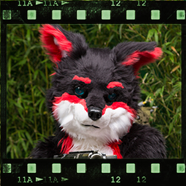 Eurofurence 2015 fursuit photoshoot. Preview picture of Blackie