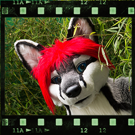 Eurofurence 2015 fursuit photoshoot. Preview picture of Svix