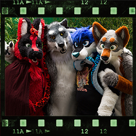 Eurofurence 2015 fursuit photoshoot. Preview picture of Hellie, Sushi, FallenWolf, …