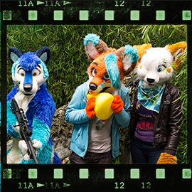 Eurofurence 2015 fursuit photoshoot. Preview picture of Ári, Rave Fox, Silent Ravyn