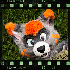 Eurofurence 2015 fursuit photoshoot. Preview picture of Ralphie Racoon