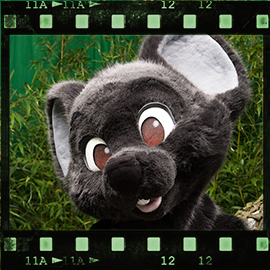Eurofurence 2015 fursuit photoshoot. Preview picture of Mausie