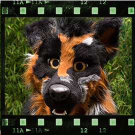 Eurofurence 2015 fursuit photoshoot. Preview picture of Cole