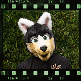 Eurofurence 2015 fursuit photoshoot. Preview picture of Sparkley