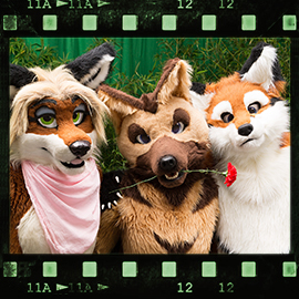 Eurofurence 2015 fursuit photoshoot. Preview picture of Kit, Angie, Barbie'Q'Foxtail