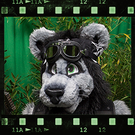 Eurofurence 2015 fursuit photoshoot. Preview picture of Klaatu