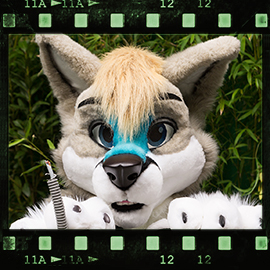 Eurofurence 2015 fursuit photoshoot. Preview picture of Bailey