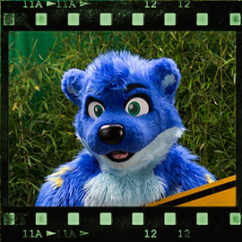 Eurofurence 2015 fursuit photoshoot. Preview picture of Shifty