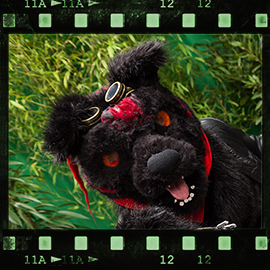 Eurofurence 2015 fursuit photoshoot. Preview picture of Giovanni Magnus