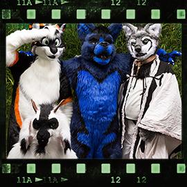 Eurofurence 2015 fursuit photoshoot. Preview picture of HeyZ, Gregory, Polar Darknoir, …