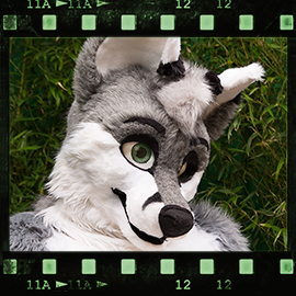 Eurofurence 2015 fursuit photoshoot. Preview picture of Hyro