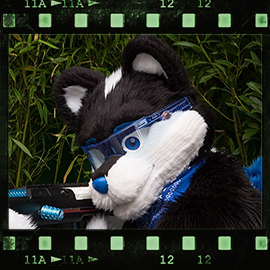 Eurofurence 2015 fursuit photoshoot. Preview picture of Zippy the Skunk