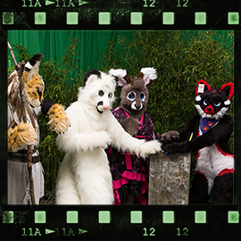 Eurofurence 2015 fursuit photoshoot. Preview picture of Gatchi, Monti, Bubschi, …