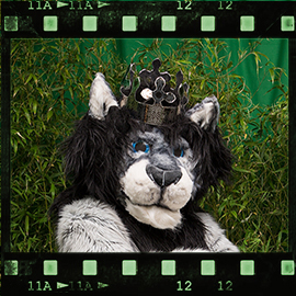 Eurofurence 2015 fursuit photoshoot. Preview picture of KingTaibu