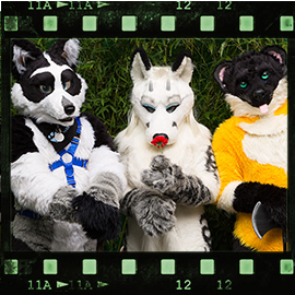 Eurofurence 2015 fursuit photoshoot. Preview picture of Teeko, Venatura, Booly
