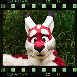 Eurofurence 2015 fursuit photoshoot. Preview picture of Swip