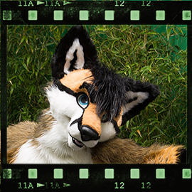 Eurofurence 2015 fursuit photoshoot. Preview picture of Senica