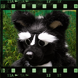 Eurofurence 2015 fursuit photoshoot. Preview picture of Stinky