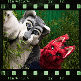 Eurofurence 2015 fursuit photoshoot. Preview picture of Arto Husky, Percy