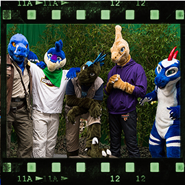Eurofurence 2015 fursuit photoshoot. Preview picture of Blueraptor, Copper, Zed, …