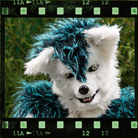 Eurofurence 2015 fursuit photoshoot. Preview picture of Lýcos