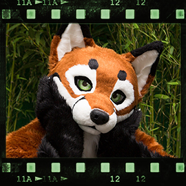 Eurofurence 2015 fursuit photoshoot. Preview picture of Vulpes