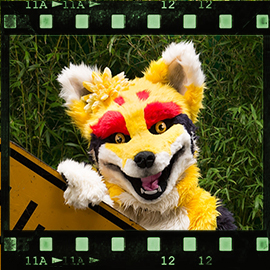 Eurofurence 2015 fursuit photoshoot. Preview picture of Blazer18