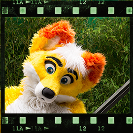 Eurofurence 2015 fursuit photoshoot. Preview picture of ESC