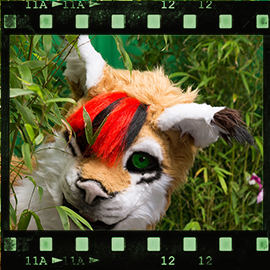 Eurofurence 2015 fursuit photoshoot. Preview picture of Cato