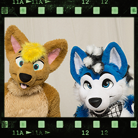 Eurofurence 2016 fursuit photoshoot. Preview picture of HemiHusky, James Coyote