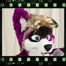 Eurofurence 2016 fursuit photoshoot. Preview picture of Pawalo