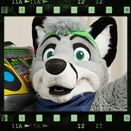Eurofurence 2016 fursuit photoshoot. Preview picture of Silver