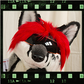 Eurofurence 2016 fursuit photoshoot. Preview picture of Svix