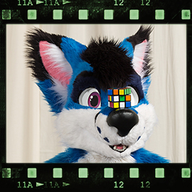 Eurofurence 2016 fursuit photoshoot. Preview picture of Saphi