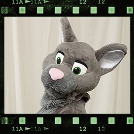 Eurofurence 2016 fursuit photoshoot. Preview picture of Rattus