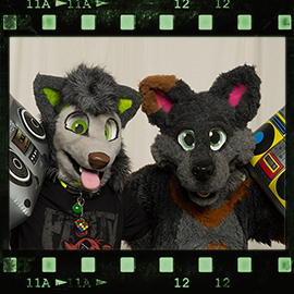 Eurofurence 2016 fursuit photoshoot. Preview picture of Dave, Danwolf