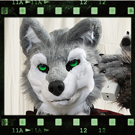 Eurofurence 2016 fursuit photoshoot. Preview picture of Furgil Wolf