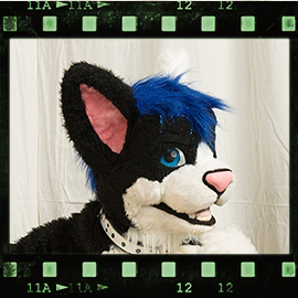 Eurofurence 2016 fursuit photoshoot. Preview picture of Maho