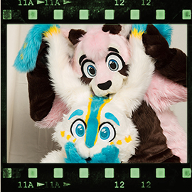 Eurofurence 2016 fursuit photoshoot. Preview picture of Pudding, Knuffie